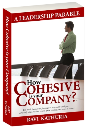 Book - How Cohesive is Your Company?